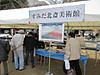Hokusai_sakura_art